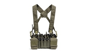 Haley D3CR X Disruptive Environments Chest Rig Ranger Green